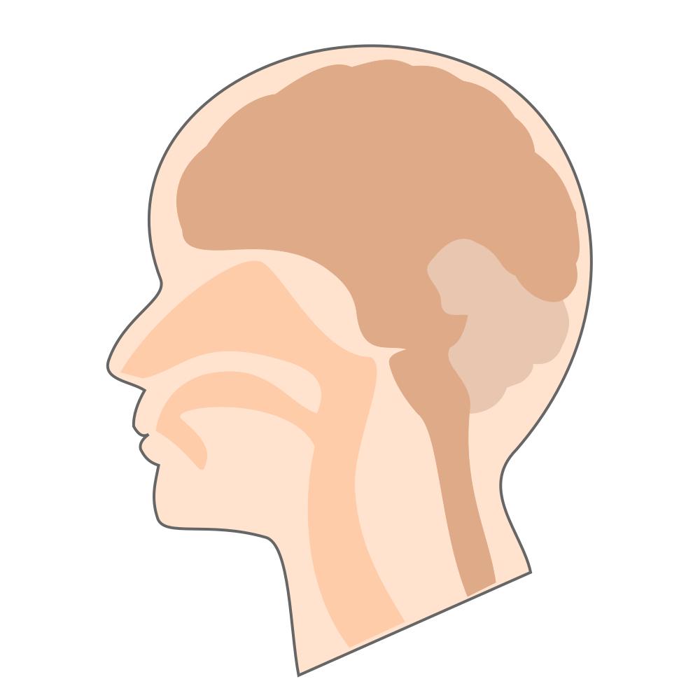 がん頭部・首