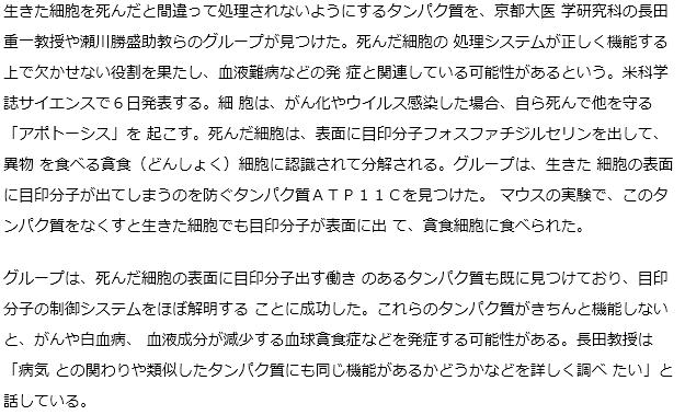 """細胞死""""目印""""出現防ぐ物質、京大グループ発見"""
